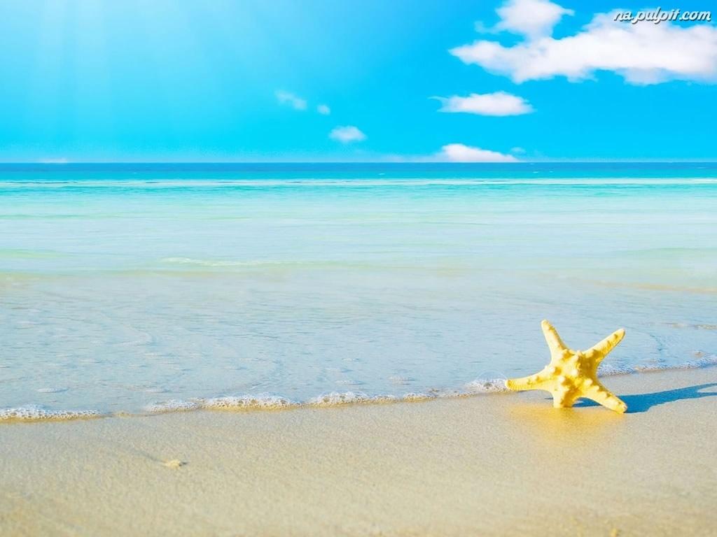 moving-desktop-backgrounds-beach